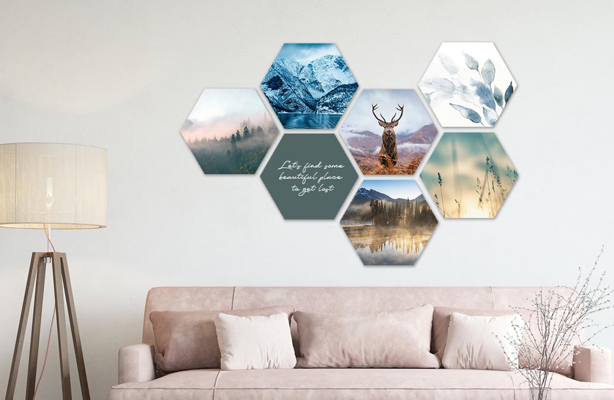 Hexagons natuur
