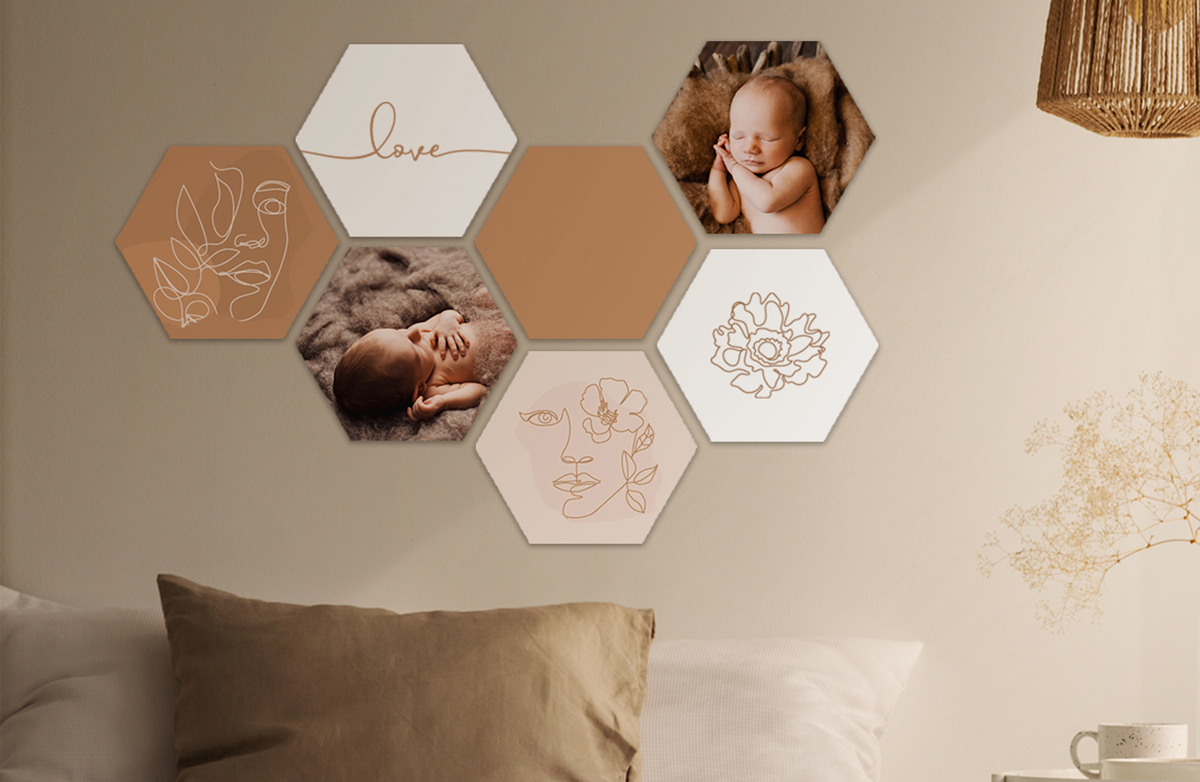 Hexagons new born